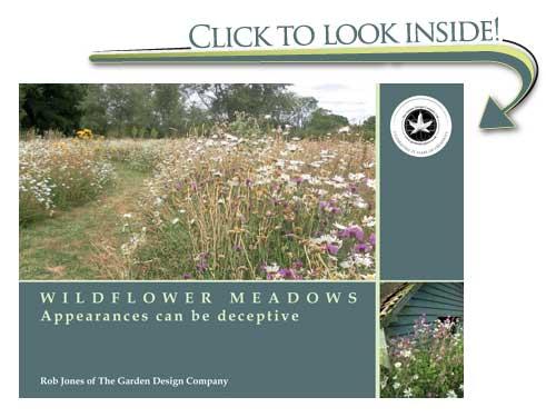 Sneak preview of Wildflower Meadows