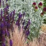 garden design colour scheme