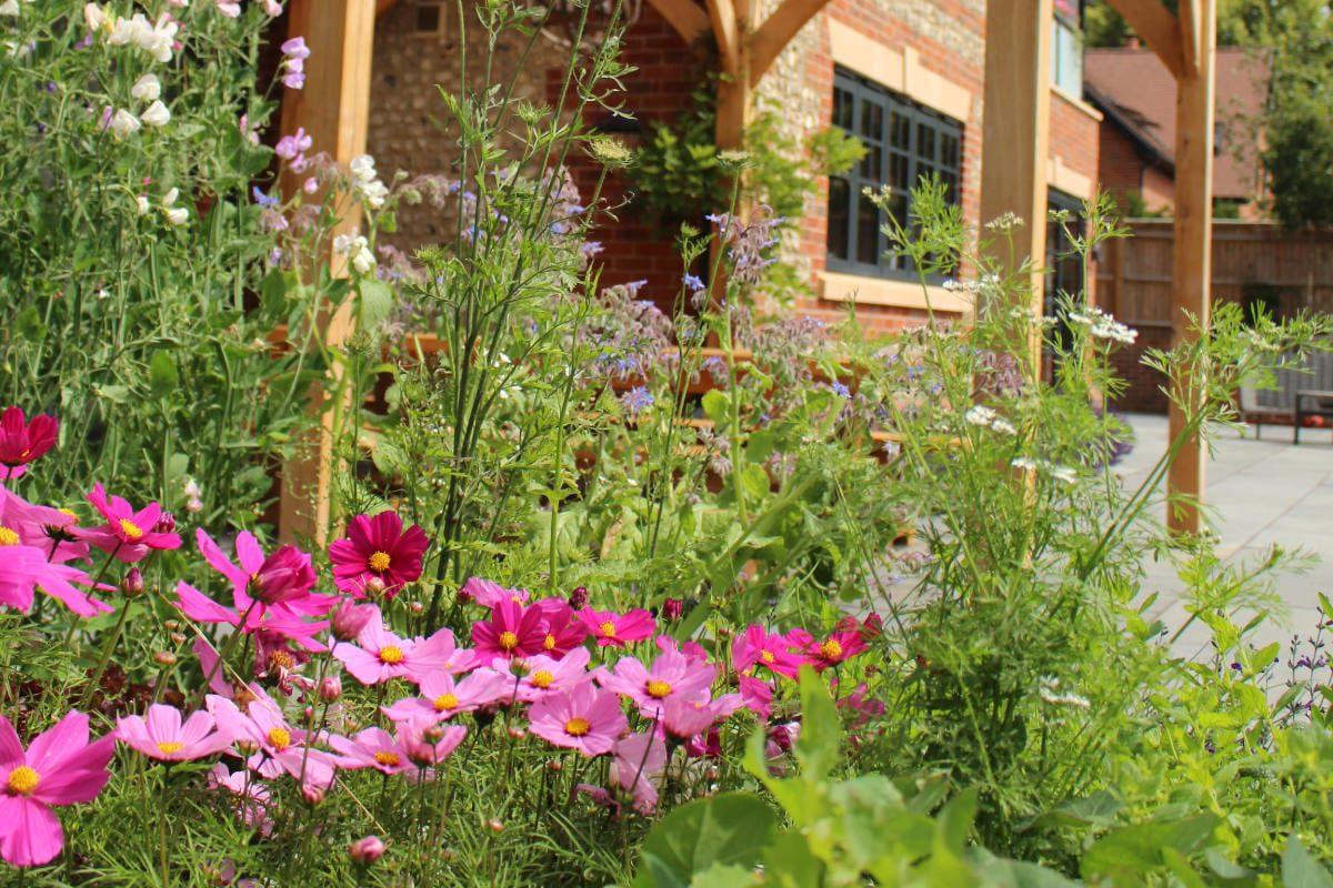 garden design pink flowers