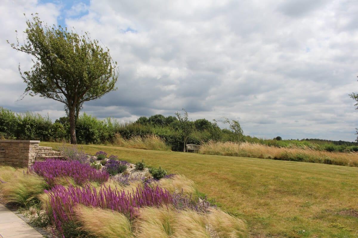 garden review windswept