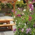 garden design scented flowers