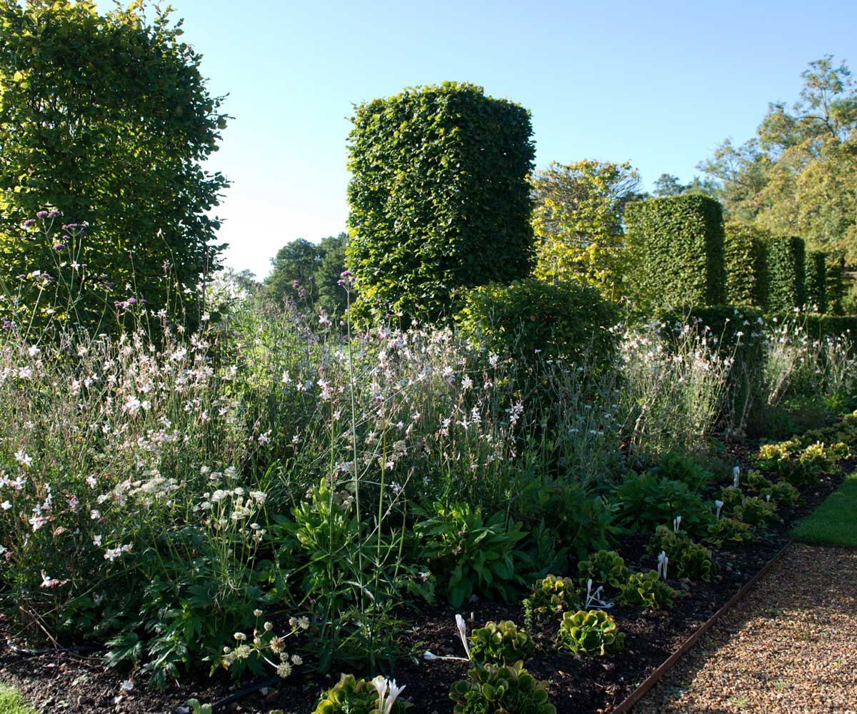 The extended herbaceous border